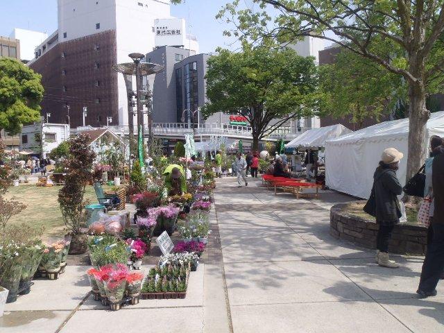 2013緑化フェスティバル